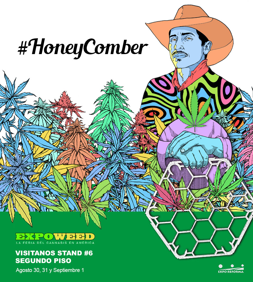 HONEY COMBER. DISPOSITIVO DE ENTRENAMIENTO DE PLANTA